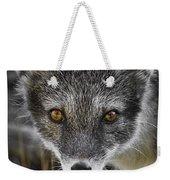Arctic Fox In Summer Coat Weekender Tote Bag