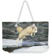 Arctic Fox Jumping Weekender Tote Bag