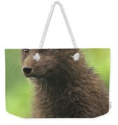 Arctic Fox Portrait Alaska Wildlife Weekender Tote Bag