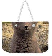 Arctic Fox Pup Alaska Wildlife Weekender Tote Bag