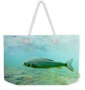 Arctic Grayling Or Thymallus Arcticus Underwater Weekender Tote Bag