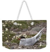 Arctic Tern In Its Nest Weekender Tote Bag