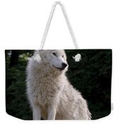 Arctic Wolf On Hill Weekender Tote Bag