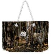 Arctic Wolf Picture 242 Weekender Tote Bag