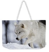 Arctic Wolf Pictures 1054 Weekender Tote Bag