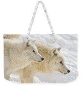 Arctic Wolf Pictures 1081 Weekender Tote Bag