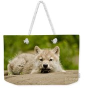 Arctic Wolf Pictures 1118 Weekender Tote Bag