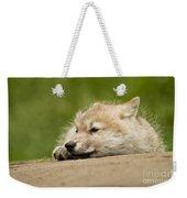 Arctic Wolf Pictures 1121 Weekender Tote Bag
