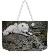 Arctic Wolf Pictures 1142 Weekender Tote Bag