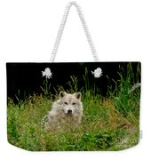 Arctic Wolf Pictures 1172 Weekender Tote Bag