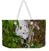 Arctic Wolf Pictures 1228 Weekender Tote Bag