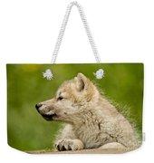 Arctic Wolf Pictures 340 Weekender Tote Bag
