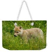 Arctic Wolf Pictures 341 Weekender Tote Bag