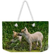 Arctic Wolf Pictures 347 Weekender Tote Bag