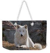 Arctic Wolf Pictures 518 Weekender Tote Bag