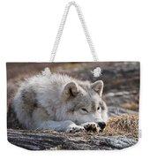 Arctic Wolf Pictures 526 Weekender Tote Bag