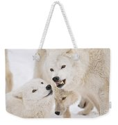 Arctic Wolf Pictures 872 Weekender Tote Bag