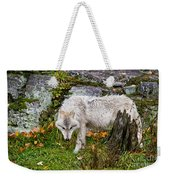 Arctic Wolf Pictures 927 Weekender Tote Bag