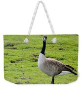 Are You Talking To Me Weekender Tote Bag by Barbara Snyder