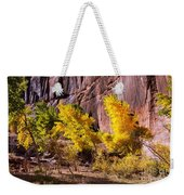 Arizona Autumn Colors Weekender Tote Bag