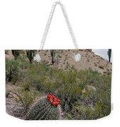 Arizona Icons Weekender Tote Bag