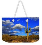 Arizona Landscape 2 Weekender Tote Bag