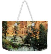 Arizona's Betatkin Aspens Weekender Tote Bag