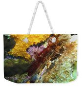 Arrow Crab In A Rainbow Of Coral Weekender Tote Bag
