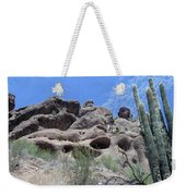 Art 1904 American Landscape Cactus Stone Mountains And Skyview By Navinjoshi Artist Toronto Canada Weekender Tote Bag