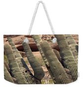 Art No.1898 American Landscape Cactus Stone Mountains And Skyview By Navinjoshi Artist Toronto Canad Weekender Tote Bag