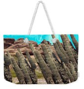 Art No.1900 American Landscape Cactus Stone Mountains And Skyview By Navinjoshi Artist Toronto Canad Weekender Tote Bag