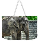 Asian Elephant  0a Weekender Tote Bag