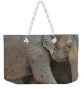 Asian Elephant Weekender Tote Bag