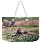 Asian Elephants - In Support Of Boon Lott's Elephant Sanctuary Weekender Tote Bag