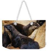 Asian Otters Weekender Tote Bag