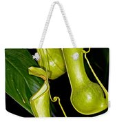 Asian Pitcher Plant Weekender Tote Bag