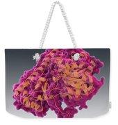 Aspartate Transaminase, Molecular Model Weekender Tote Bag