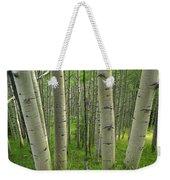 Aspen Forest In Spring Weekender Tote Bag