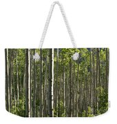Aspen Grove Along Independence Pass II 2009 Weekender Tote Bag