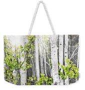 Aspen Grove Weekender Tote Bag by Elena Elisseeva