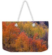 Aspen Grove In Fall Colors Weekender Tote Bag
