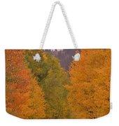 Aspen Road Weekender Tote Bag