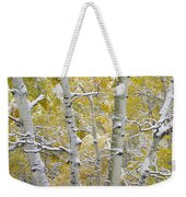 Aspen Trees Covered With Snow Weekender Tote Bag