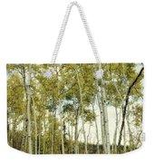 Aspen Trees In Spring  Weekender Tote Bag