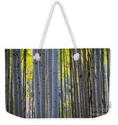 Aspen Trunks Weekender Tote Bag by Inge Johnsson