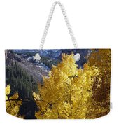 Aspen Window Weekender Tote Bag