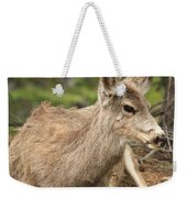 At Rest In The Rockies Weekender Tote Bag