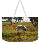 At Ruchama Forest Israel 1 Weekender Tote Bag
