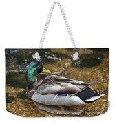 At The Duck Pond V5 Weekender Tote Bag
