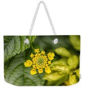 Atlanta Botanical Garden Flowers V9 Weekender Tote Bag